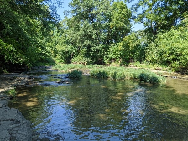 Relaxation and recreation at The Line Creek Trail
