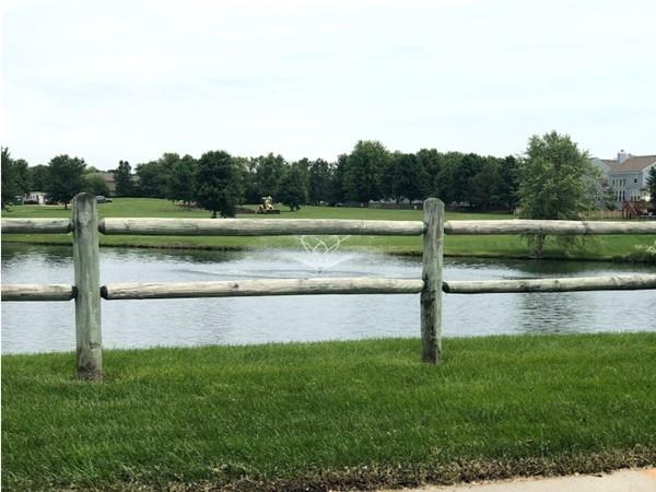 Pond inside Meadowridge