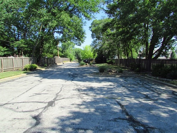 Tree lined entrance to Williamsbrook from 75th Street