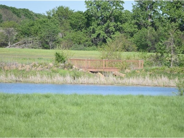 Foxberry Estates; one of three stocked ponds on 60 acres of common area, with walking trails