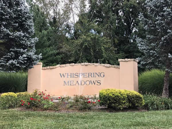 Homes For Sale In Whispering Meadows