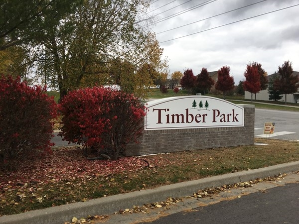 Beautiful fall colors at Timber Park