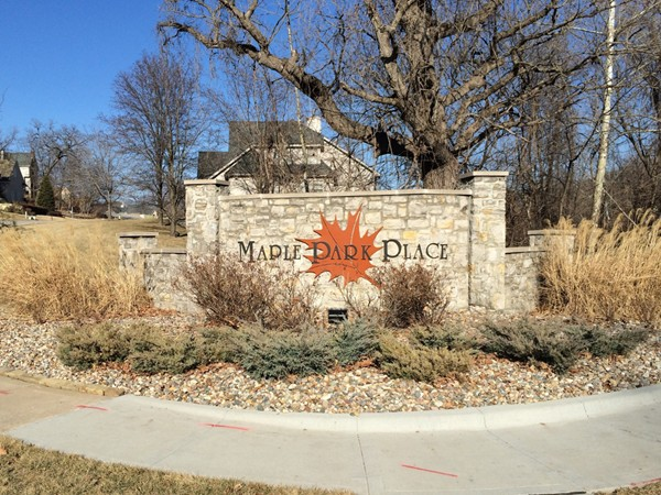 Beautiful homes in Maple Park Place. Homes for sale around the area.  Oak Park School District