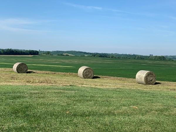 Platte County hay field