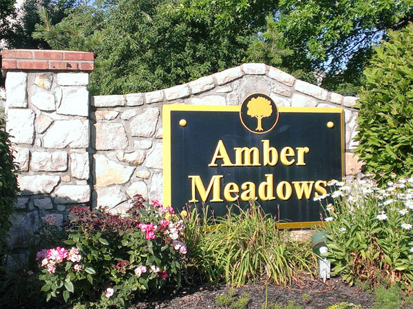 Amber Meadows