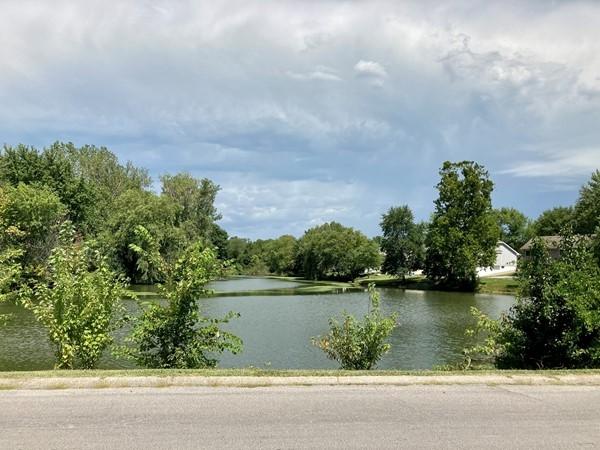 Huge pond in Southbrook neighborhood