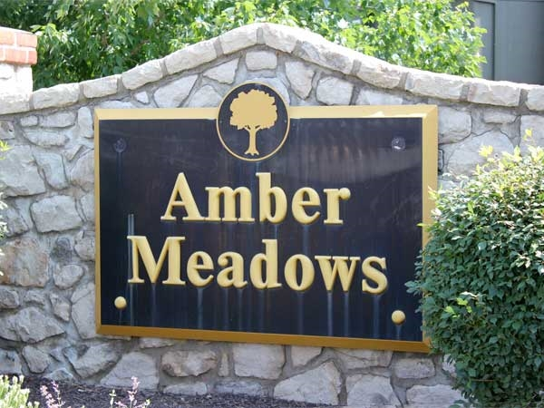Amber Meadows: Homes from $150K - $350K.