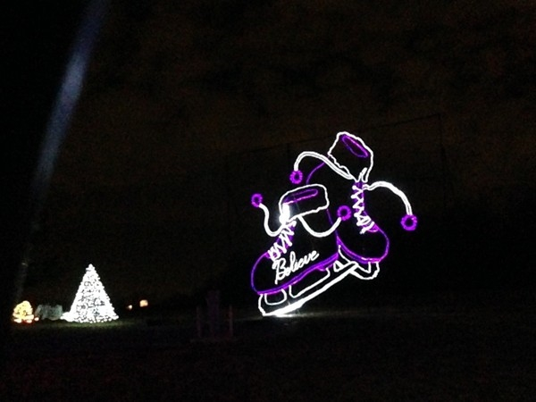 Purple and white skates shine as part of the Longview Lake Park light display