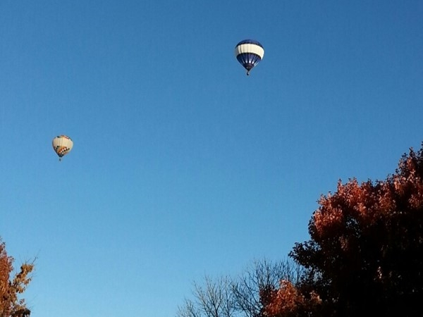 Balloons over Nottingham Forest in Overland Park