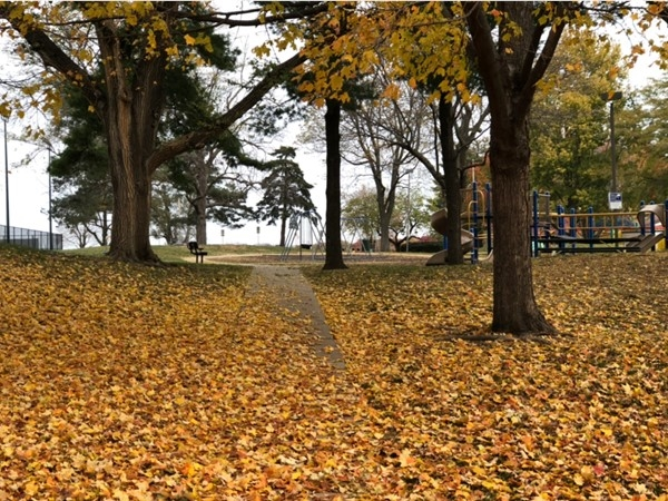 Fall at Austin Harmon Park in Prairie Village