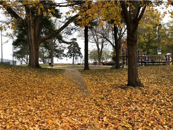 Fall at Austin Harmon Park in Prairie Village