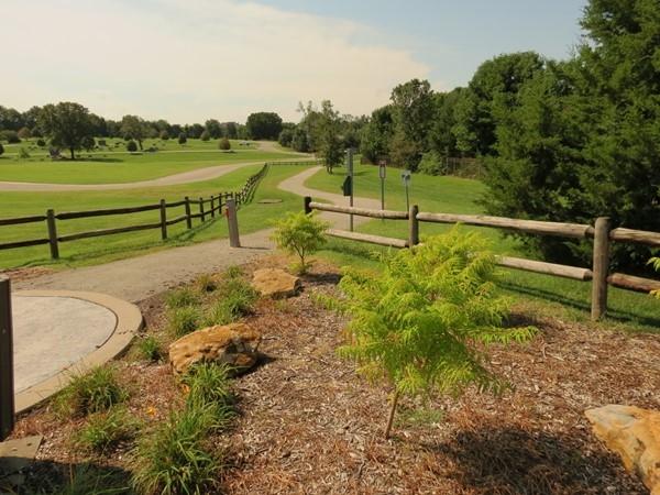 Hidden Woods Park in Lenexa, Just off 83rd Street and Quivira