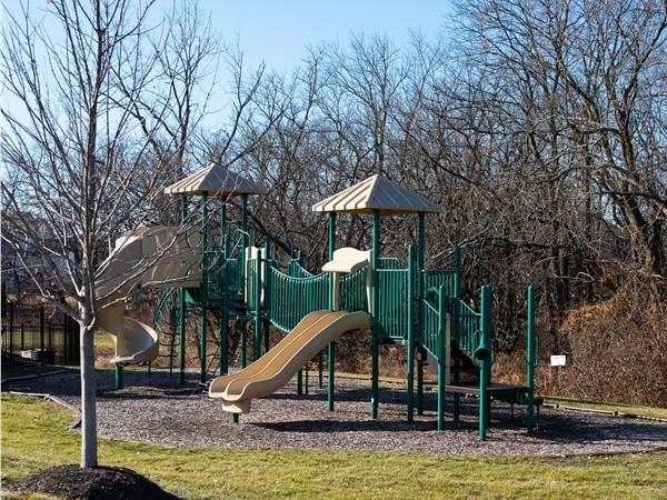 Playscape at Mills Farm Overland Park - fall 2019