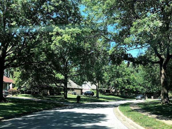 The tree-studded Sheridan Park neighborhood
