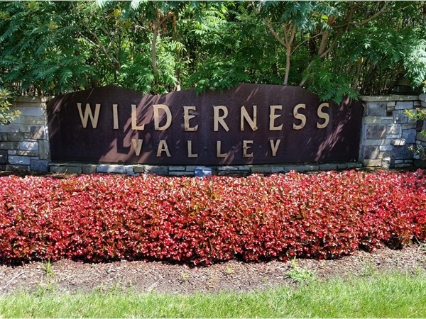 "The ""flowered"" entrance to Wilderness Valley"