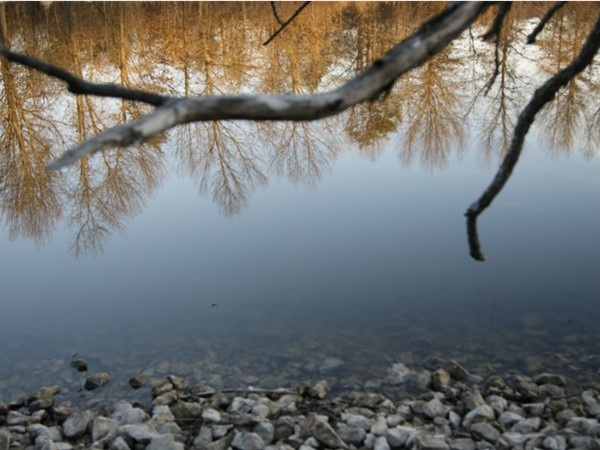 Reflection like a mirror in the water. James A Reed Memorial Wildlife Area