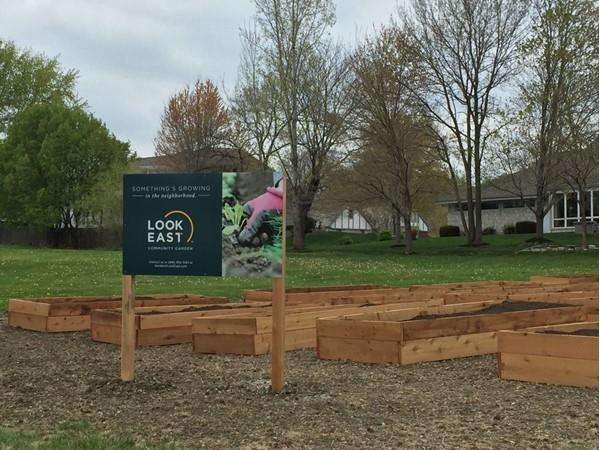 Look East Community Garden in the Northland
