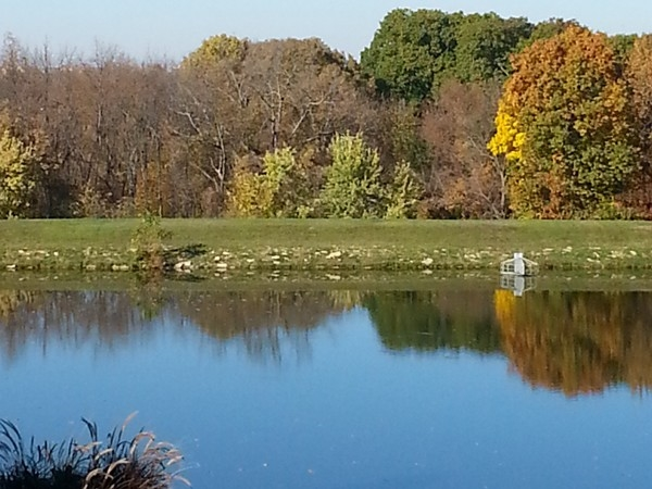 A fall view of the lake at Nottingham Estates