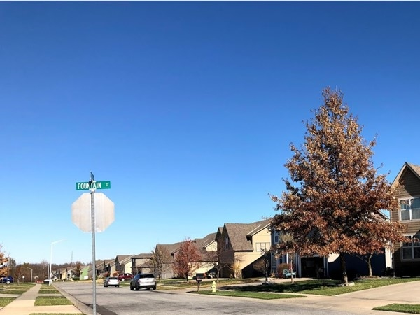 You will surely love this lovely Madison Reserve neighborhood