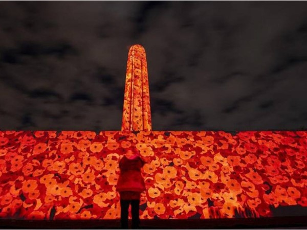 Giant poppies light up Liberty Memorial for WWI centennial ... just amazing
