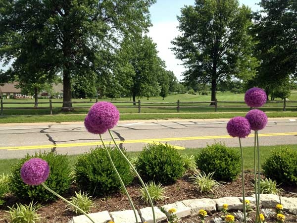 One of the many scenic views at the Lakewood Country Club golf course.