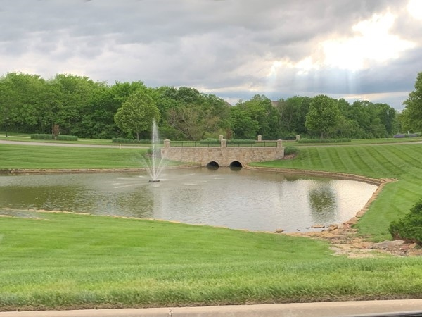 Pond in Lakes of Oakmont
