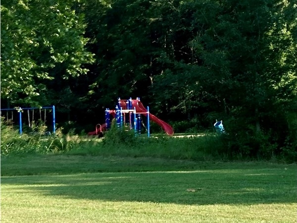 Playground at Northwyck Park in Liberty