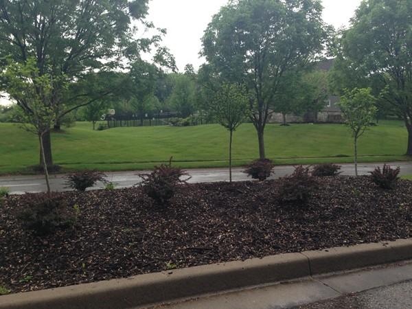 Beautiful landscaping in The Fairways