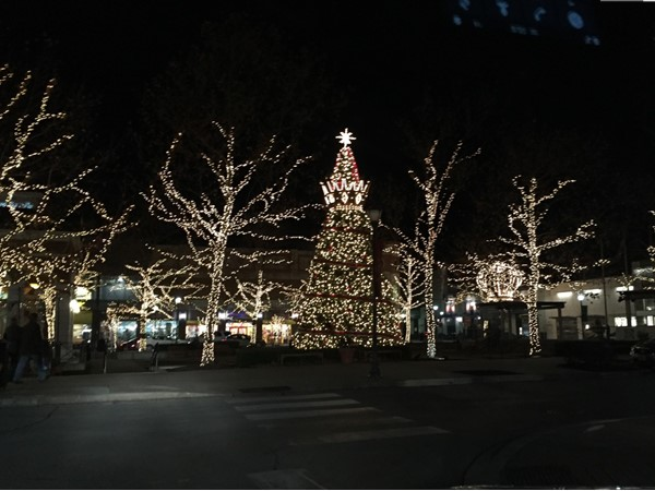 Christmas lights at Zona Rosa