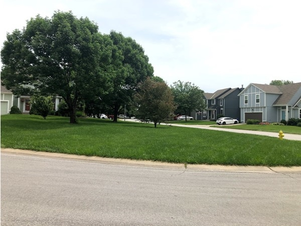 You will surely love the quiet neighborhood of Bradford Gardens
