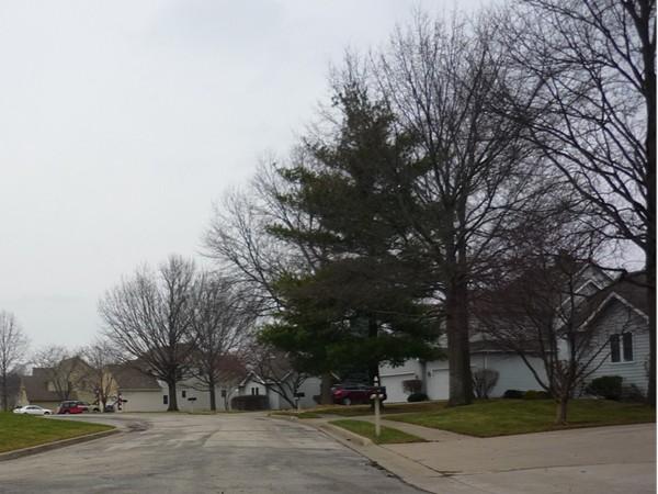 Northeast Waterfield Village Drive looking northwest