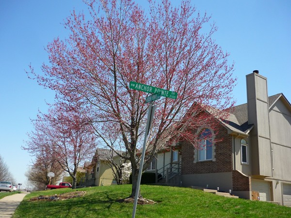 The corner of Northwest Anchor Pointe Drive and Northwest Hidden Pointe Drive is bright and lush