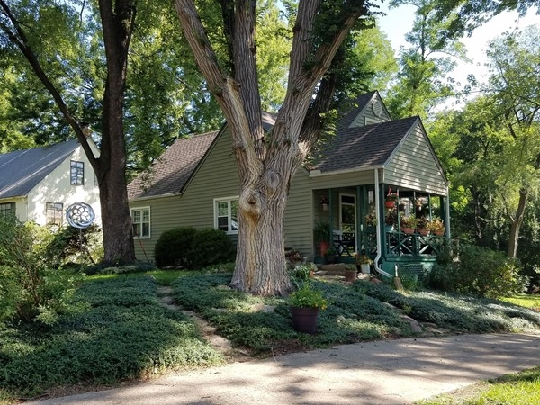 Charming cottages with 15 minute access to downtown in Little Village!  Lovely trees