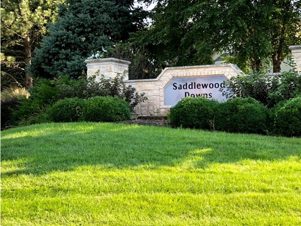 Welcome to Saddlewood Downs