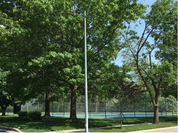 Tennis court on Jackson Drive and Brooktree Lane