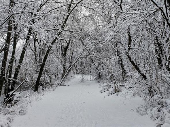 Winter wonderland - Overland Park
