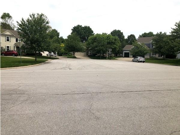 The beautiful and quiet neighborhood of Meadowridge