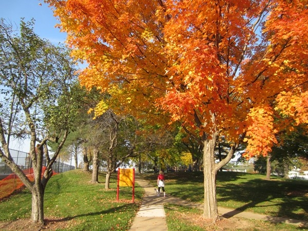 Enjoying fall in Harmon Park, just one of the many great Prairie Village parks