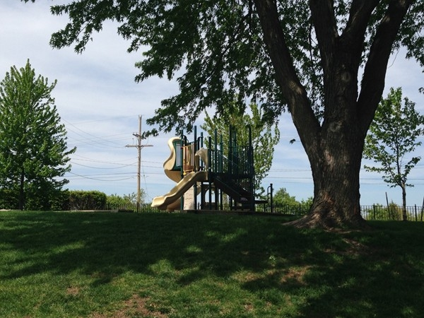 Oaks of North Brook community playground