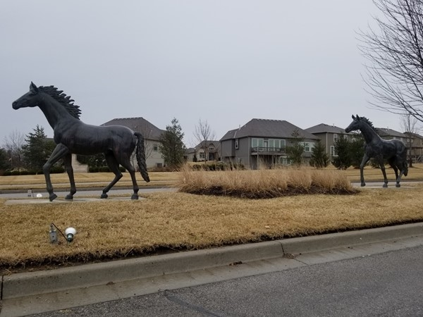 Running ponies at the front of Highland Meadows Subdivision, in Lee's Summit