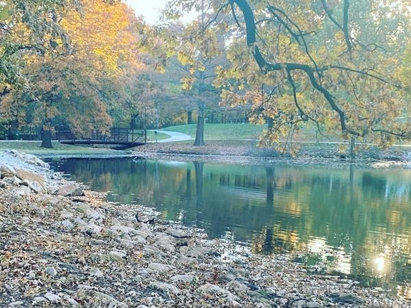 Fall in Antioch Park is so pretty