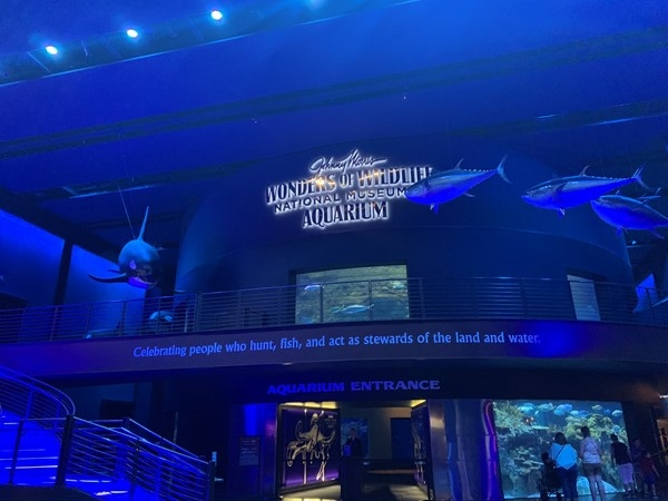 This is a must go to in Springfield. It is connected with Bass Pro