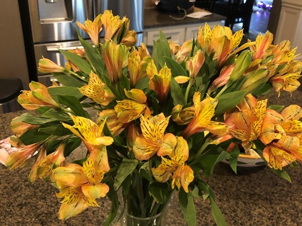 Flowers always brighten a room, especially in this time of crisis ... spread the love