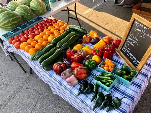 Farmers Market finds! Saturday mornings in Downtown Lees Summit are the best