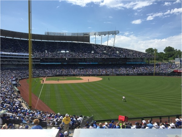 Cheering for our Kansas City Royals at Kauffman Stadium