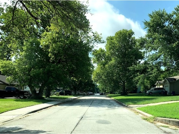 The quiet and green neighborhood of Ridgeview South