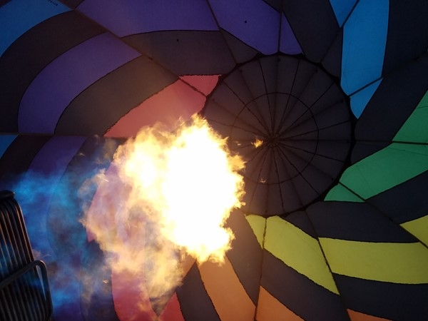 Hot air balloons may be spotted at Twisted Vines. Get up close and personal