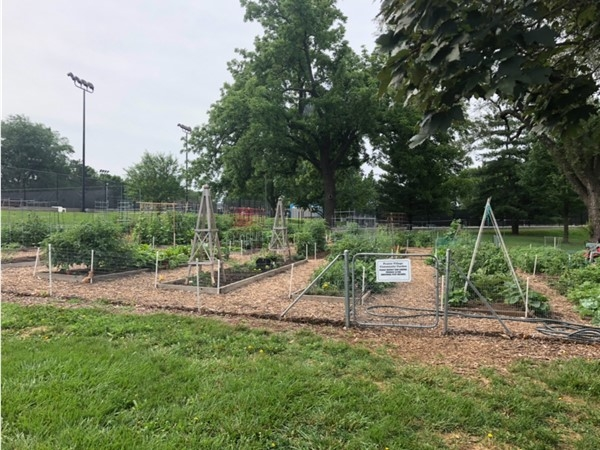 Prairie Village community garden for individual plot holders at Austin Harmon Park