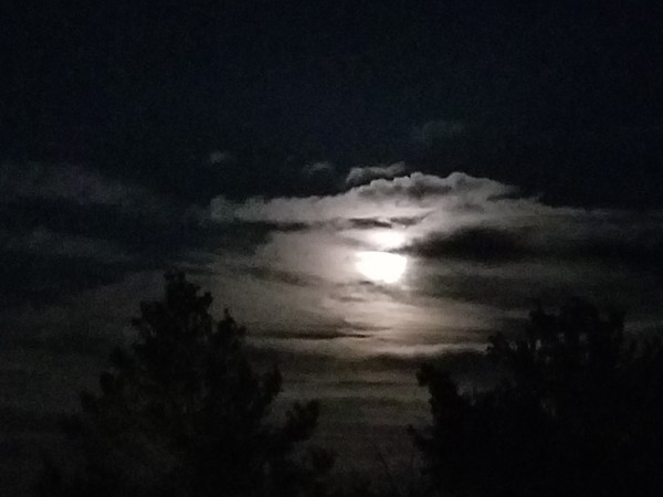 Super moon over Ward Park Place Subdivision