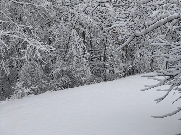 There is such peace on the fresh, untouched snow.  Hills of Oakwood was quiet all weekend